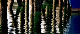 MaryAnn Vitiello Landscapes