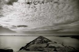 MaryAnn Vitiello Photography